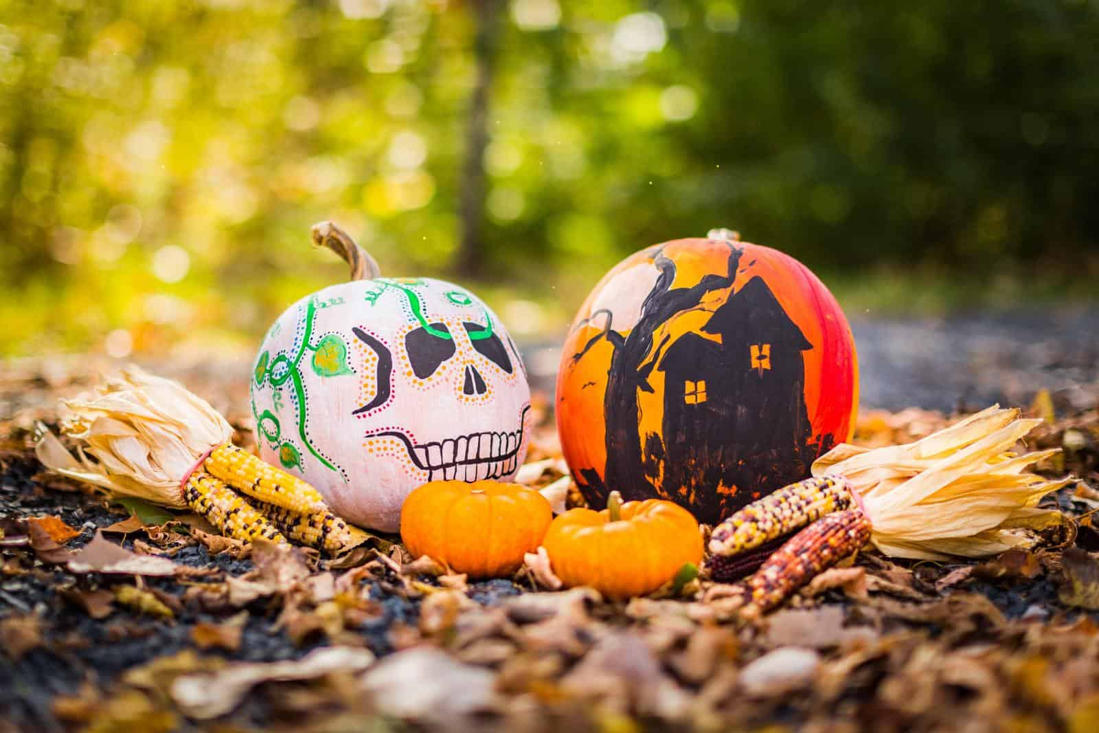 Spooky Halloween Tours when Glamping in Dorset